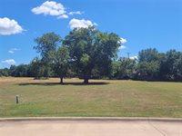 110 Dove Meadow Lane, Glen Rose, TX 76043