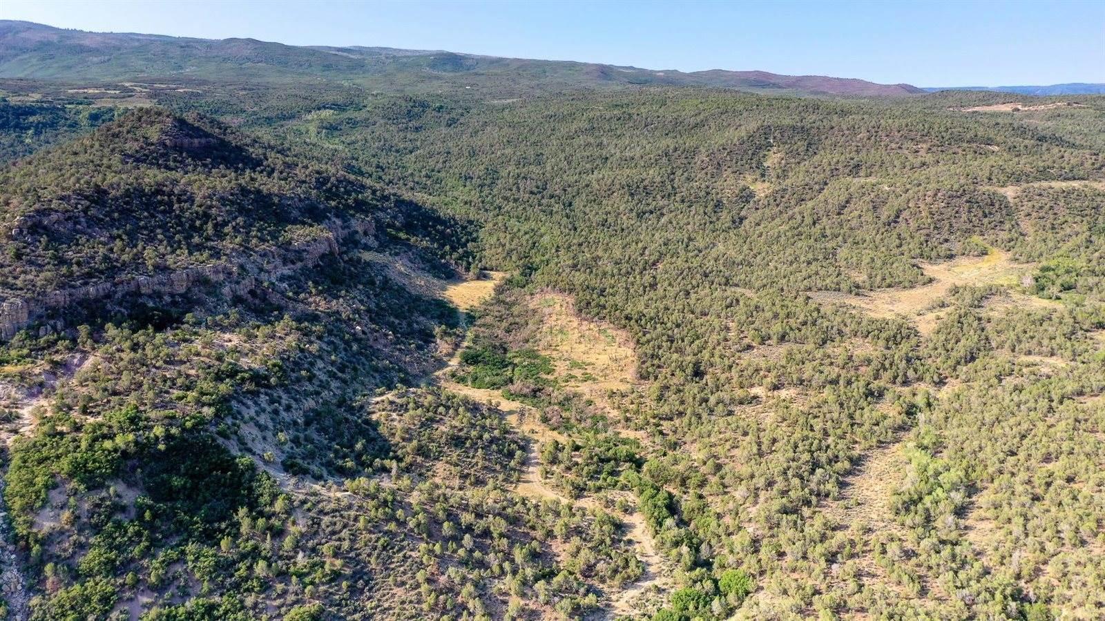 TBD 51 Road, Mesa, CO 81643