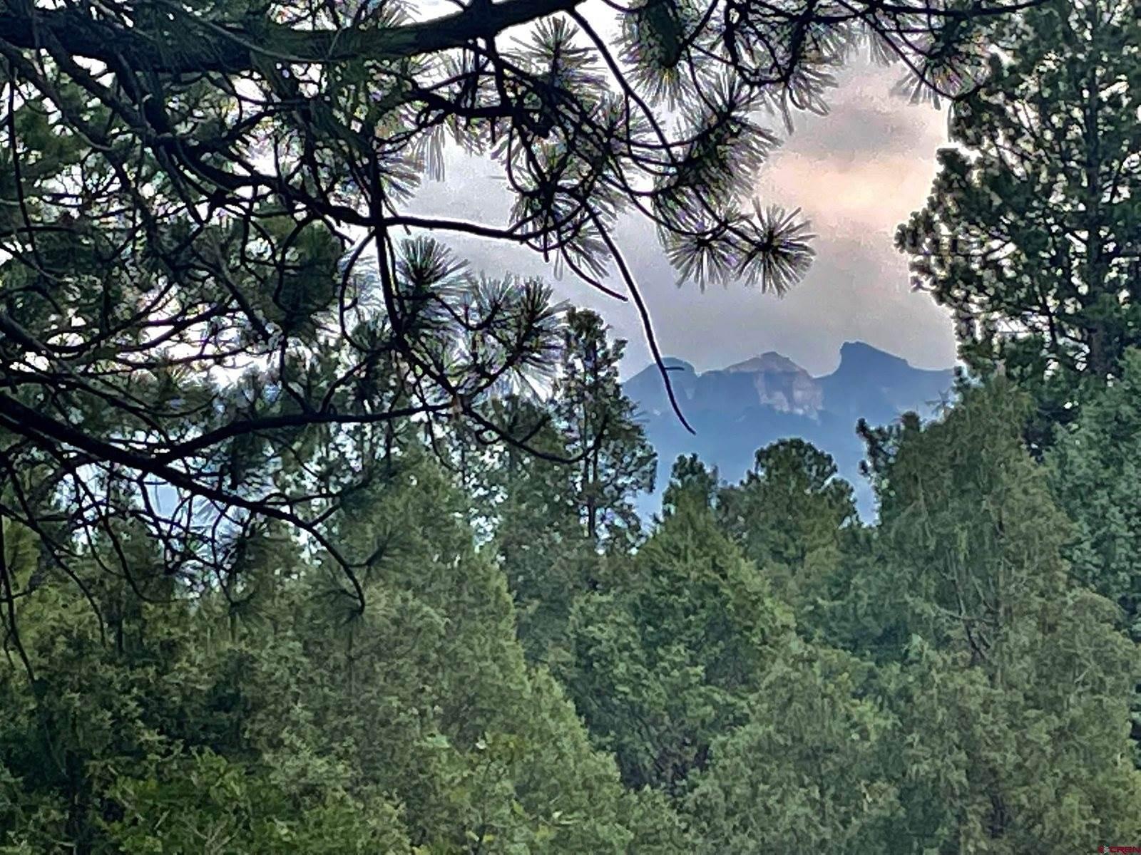 88 Hummingbird Trail, Ridgway, CO 81432