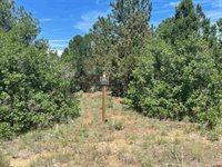 TBD (Lot 541) N Badger Trail, Ridgway, CO 81432