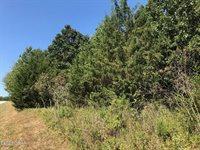 PT LOT 12 South Loma Linda Estates Drive, #12, Loma Linda, MO 64804