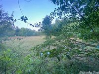Stump, Vilonia, AR 72173