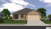 Marston Road, Lorena, TX 76655
