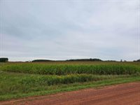 153rd Road, Spencer, WI 54479