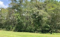 182 SW Waco Court, Lake City, FL 32025