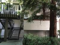 708 San Conrado Terrace #3, Sunnyvale, CA 94085